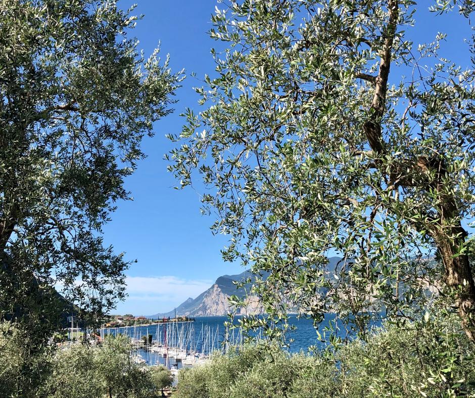 Montags-Impuls Gardasee